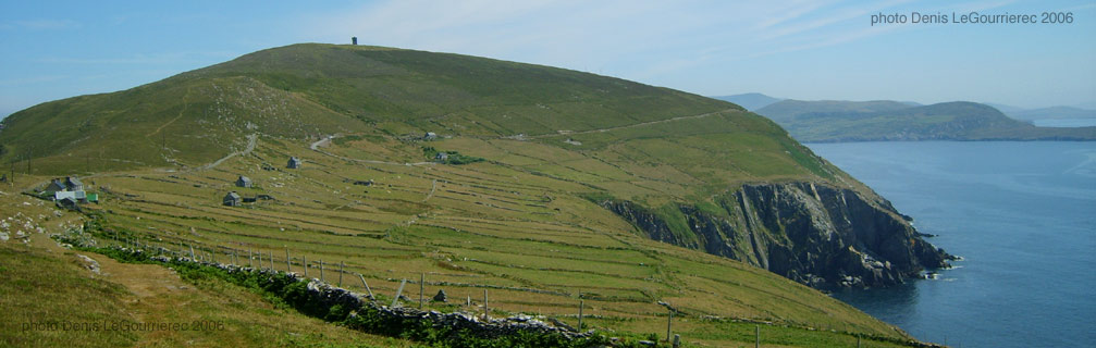 dursey island fields stone walls panorama