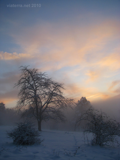 sunset and winter mist